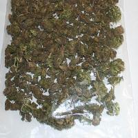 Marihuana Krosno